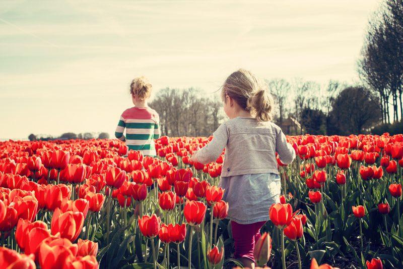zwei Mädchen im roten Tulpenfeld