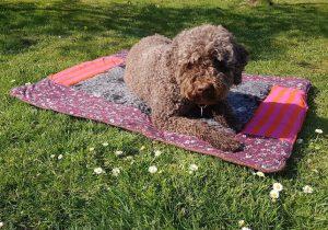 Tierische Trauer Hund auf Erinnerungsdecke